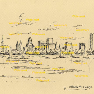 Buffalo Skyline Pen & Inks