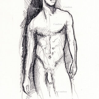 Hot nude male #329Z pencil figure drawing by artist Stephen F. Condren with LGBTQ gay prints.