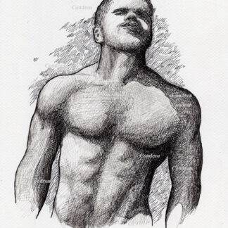 Hot nude male #324A pen & ink figure drawing by artist Stephen F. Condren with LGBTQ gay prints.