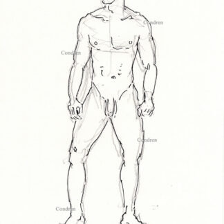 Nude male 335A pen & ink gay figure drawing with large flaccid uncut penis by artist Stephen Condren.