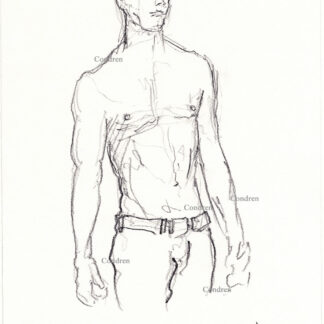 Daniel Radcliffe 439A shirtless male pencil figure drawing by artist Stephen Condren.