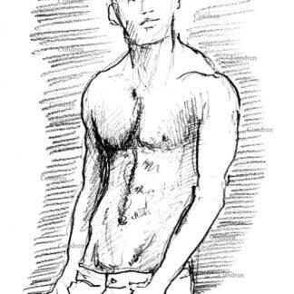 Janis Danner 319A shirtless male torso pencil figure drawing by artist Stephen Condren.