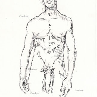 Nude gay male 450A standing with large flaccid uncut penis and harry balls pen & ink drawing.