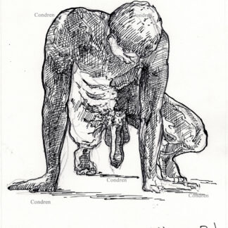 Nude gay male 452A on all fours with large uncut cock and balls hanging pen & ink drawing.