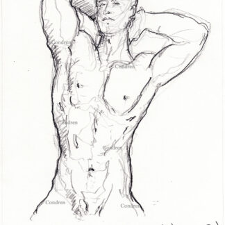 Nude male torso 455A with chiseled 6-pack and buff abs pencil gay figure drawing.