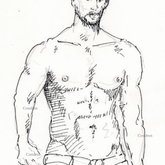 Dominique Surquin 494A pen & ink gay shirtless male torso with 6-pack and abs.